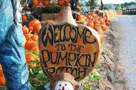 Pumpkin Patch Fort Worth Tx by Flower Mound Pumpkin Patch Of Flower Mound Texas Tx Flower Mound
