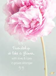Friendship is like a flower with love & care it