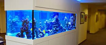 referenzen meerwasser aquarium aquaristik center ost gmbh