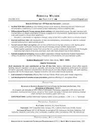 It Director Resume Examples Samples Manager