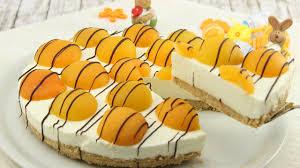 rezept aprikosen cheesecake ohne backen
