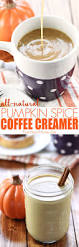 Mccafe Pumpkin Spice Keurig by Best 25 Homemade Coffee Creamer Ideas On Pinterest Coffee