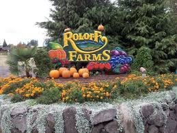 Roloff Pumpkin Patch by Best 25 Roloff Kids Ideas On Pinterest Big W Curtains Clay
