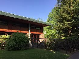 chambre standard sequoia lodge hotel review disney s sequoia lodge