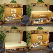 Murphy Beds Orlando by Wallbeds Modern Birch Murphy Bed U0026 Reviews Wayfair Lagring