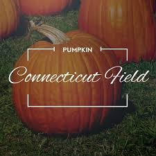 Connecticut Field Pumpkin For Pies by 69 Best Garden Wishlist Images On Pinterest Herb Seeds And Seed