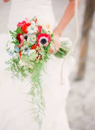 110 best Flower ideas images on Pinterest