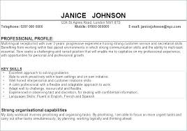 Sales Profile Resume For A Examples Sample Of In Example