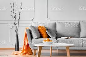 äste neben einem sofa mit orangefarbener decke und kissen im wohnzimmerinterieur echtes foto stockfoto und mehr bilder ast pflanzenbestandteil