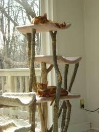 17 arbre à chat en bois designs de chambre designs de
