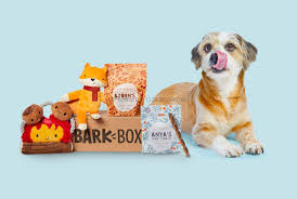 BarkBox September 2019 Subscription Box Coupon + $5 1st Box ... Bark Box Coupons Arc Village Thrift Store Barkbox Ebarkshop Groupon 2014 Related Keywords Suggestions The Newly Leaked Secrets To Coupon Uncovered Barkbox That Touch Of Pit Shop Big Dees Tack Coupon Codes Coupons Mma Warehouse Barkbox Promo Codes Podcast 1 Online Sales For November 2019 Supersized 90s Throwback Electronic Dog Toy Bundle Cyber Monday Deal First Box For 5 Msa
