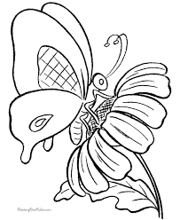 Top Free Butterfly Coloring Pages Gallery Kids Ideas