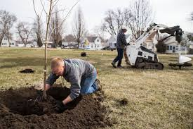 Omaha Nonprofit Hopes To Plant Thousands Of Trees To Limit Emerald ... Mail Order Natives Mailordernatives Instagram Account Pikstagram Tax Day 2019 All The Deals And Freebies To Cashin On April 15 Arbor Foundation Coupons Code Promo Discount Free National Forest Tree Care Planting Gift Mens Tshirt Ather Gray Coffee Whosale Usa Coupon Codes Online Amazoncom Vic Miogna Brina Palencia Matthew How Start Create Ultimate Urban Garden Flower Glossary Off Coupons Promo Discount Codes Wethriftcom 20 Koyah Godmother Gift Personalized For Godparent From Godchild Baptism Keepsake Tree Alibris Voucher Code Dna Testing Ancestry Suzi Author At Gurl Gone Green Page 13 Of 83