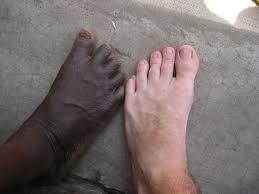pied de le blanc le 10 décembre à créteil les mots d assa diarra savaient sur quel