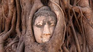 Ayutthaya Is A Fascinating Historical Park And UNESCO World Heritage Site At Just One Hour Drive From Bangkok It Makes For An Easy Refreshing Day
