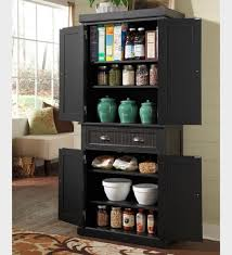 Tall Skinny Cabinet Home Depot by Furniture Elegant Design Of Storage Needs With Freestanding