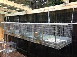 Outdoor Hutch For Meat Rabbits | Sun, Rain, Earth Learn How To Build A Rabbit Hutch With Easy Follow Itructions Plans For Building Cages Hutches Other Housing Down On 152 Best Rabbits Images Pinterest Meat Rabbits Rabbit And 106 Barn 341 Bunnies Pet House Our Outdoor Housing Story Habitats Tails Hutch Hutches At Cage Source Best 25 Shed Ideas Bunny Sheds Shed Amazoncom Petsfit 425 X 30 46 Inches Cages Exterior Cstruction Nearly Complete Resultado De Imagem Para Plans Row Barn Planos Celeiro
