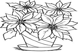 Poinsettia Coloring Page Berries Flower Pages And Print