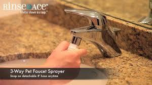rinse ace 3 way pet faucet sprayer youtube