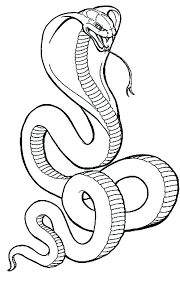 Lego Ninjago Coloring Pages Snakes Of Children Page Snake Seasonal Free Pictures Sna