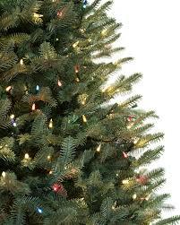 BH Balsam Fir Tree LED