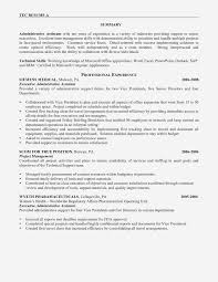 Resume Summary Examples For Administrative Assistants ... Executive Resume Samples And Examples To Help You Get A Good Job Sample Cio From Writer It 51 How To Use Word Example Professional For Ms Fer Letter Senior Australia Account Writing Guide 20 Tips Free Templates For 2019 Download Now Hr At By Real People Business Development Awardwning Laura Smith Clean Template Cover Office Simple Cv Creative Modern Instant Marissa Product Management Marketing Executive Resume Example