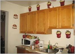 Apple Kitchen Decor Ideas by Apple Kitchen Rugs Byarbyur Co