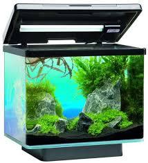 d aquarium pas cher