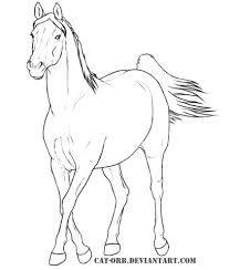 Arabian Mare Coloring Page