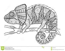 Hand Drawn Chameleon Zentangle Style For Coloring Bookshirt