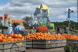 Pumpkin Picking In Chester Nj by Pennsylvania Pick Your Own Pumpkin Patches Funtober