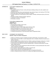 Download Facilities Coordinator Resume Sample As Image File