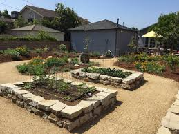 Sustainable Native And Edible Backyard With Raised Broken Concrete ... Southern Forager Spring Edible Plants In Middle Tennessee Eating The Wild Your Backyard Fixcom Landscapes Think Blue Marin Gulf Coast Gardening For Weeds And You Can Eat Remodelaholic 25 Garden Ideas Backyards Amazing Uk Links We Love Planting Plant Landscaping Sacramento Landscape Blueberries Raspberriesplants For Your Summer Guide Oakland Berkeley Bay Area Paper Mill Playhouse Yard2kitchen 197 Best Edible Wild Plants Images On Pinterest Survival Skills