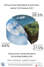 Define The Word Carbon Sink by 146 Best Soil Solutions To Climate Problems Images On Pinterest