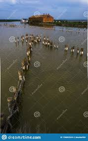 100 The Delta House Fishing On Po River Stock Image Image Of