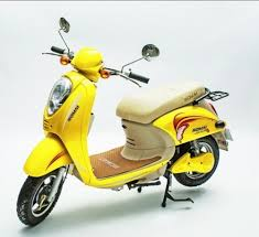 Romai Electric Scooter Manufacturer From Chennai