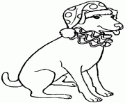 Christmas Dog E212 Coloring Pages