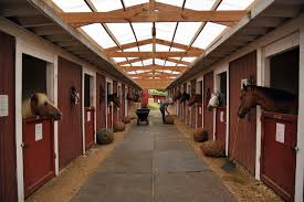 Visiting New York City's Last Horse Stables - Curbed NY Best 25 Horse Barns Ideas On Pinterest Dream Barn Farm Shedrow Barns Shed Row Horizon Structures Lshaped Indoor Riding Arenas Arena Home Design Post Frame Building Kits For Great Garages And Sheds Barn Style House Build Your Own Homes Small Monitor Wood Horse Stables Archives Blackburn Architects Pc Shelter For Miniature Donkeys Or Goats Pros Timber Framed Denali 60 Gable Youtube