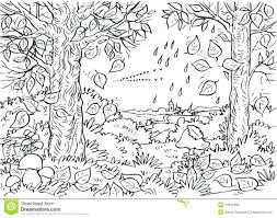 Forest Coloring Pages Printable To Print Free For Adults Deciduous