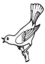 Coloring Page Singing Bird
