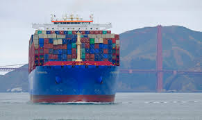 100 Shipping Containers San Francisco To Save The Whales More Commercial Vessels Slowing Down