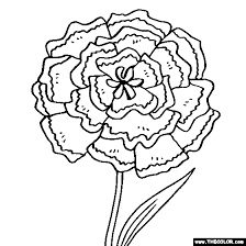 Carnation Flower Online Coloring Page