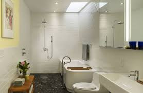 Basement Bathroom Design Photos by 20 Cool Basement Bathroom Ideas Home Design Lover