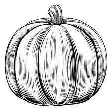Pumpkin black and white pumpkin black and white pumpkin clipart 2 3
