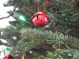The Best Choice For Christmas Trees
