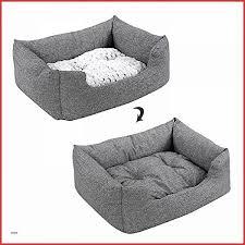 répulsif pour canapé canape repulsif interieur canape best of canys répulsif d