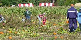 Pumpkin Patch Nj Monmouth County by Fall Trips