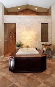 Best Plant For Dark Bathroom by 25 Best Walk Through Shower Ideas On Pinterest Big Shower