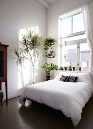 Bedroom Full Of Plants