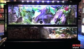 Petco Aquarium Light Co Light Petco Led Fish Tank Lights – Crypdist